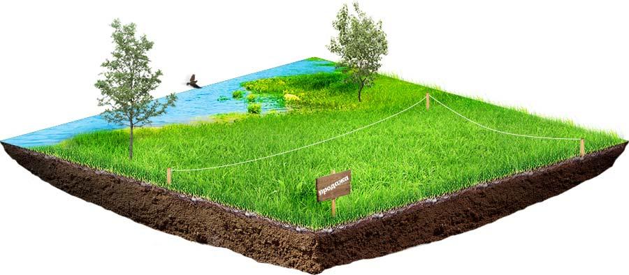 земельный оформление собственность участок